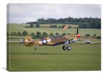 P-40 Warhawk - Landing, Canvas Print
