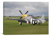 North American Mustang P-51D, Canvas Print