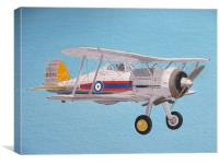 Gloster Gladiator, Canvas Print