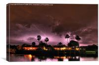 Bright Night Florida Sky, Canvas Print