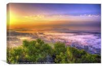 Foggy Morning, Canvas Print