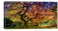 Tree of Life, Canvas Print