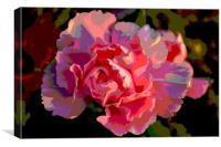Pink flower, Canvas Print