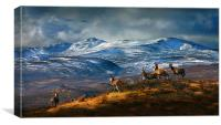 Above Strathglass, Canvas Print