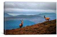 Above the Glens, Canvas Print