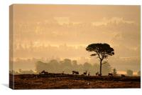 Autumn Morning, Strathglass, Canvas Print