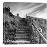 Going Up, Canvas Print