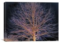 Dark Tree, Canvas Print
