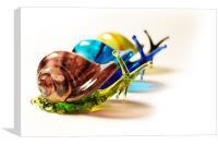 Glass Snails, Canvas Print