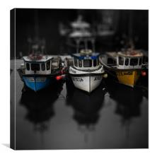 Neuky Boats, Canvas Print