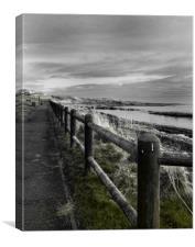 Seaside Path, Canvas Print