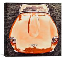 Sporty Spicey Orange, Canvas Print