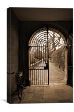 Gate, Canvas Print