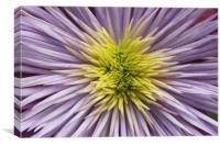 Crystal fountain spikey petals flower, Canvas Print