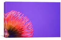 Pin cushion red flower side, Canvas Print