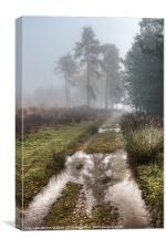 Misty Days, Canvas Print