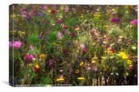 Field of Flowers, Canvas Print