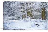 Snow Magic, Canvas Print