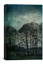 Textured Trees, Canvas Print
