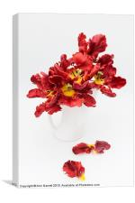 Parrot Tulips in a Milk Jug, Canvas Print