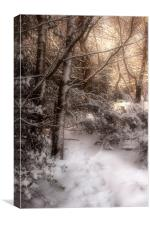 Footsteps in the Snow, Canvas Print