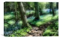 Bluebell Hill, Canvas Print
