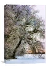 Pastel Frost, Canvas Print
