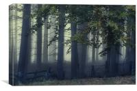 Fog On The Chase, Canvas Print