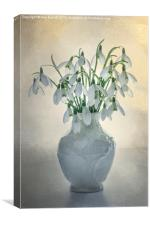 A Vase of Snowdrops, Canvas Print