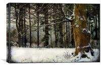 Snow Textures, Canvas Print
