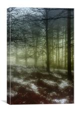 The Gloaming, Canvas Print