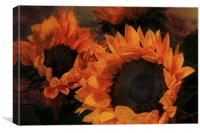 Sunflowers, Canvas Print