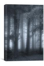Autumn Mists, Canvas Print