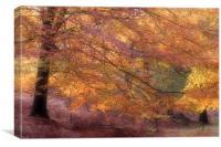 Fall Colours, Canvas Print