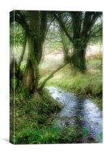 Autumn Stream, Canvas Print