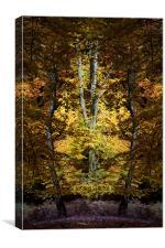 Autumn Jewel, Canvas Print