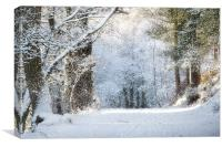 Snow on the Chase, Canvas Print