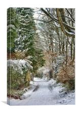 Back Gate in the Snow, Canvas Print
