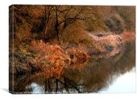 FROSTY RIVERBANK, Canvas Print