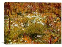 AUTUMN MEADOW, Canvas Print