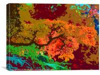 ABSTRACT AUTUMN COLOURS, Canvas Print