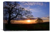 WARWICKSHIRE SUNSET, Canvas Print