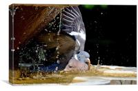 BIRD BATH, Canvas Print