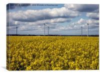 Wind Turbines, Canvas Print