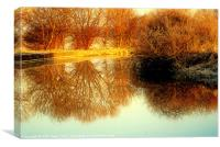 Autumn Sunlit Reflection., Canvas Print
