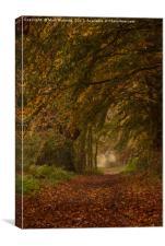 Autumn footpath, Canvas Print