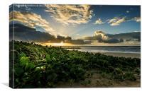 Sunrise in north Brazil, Canvas Print