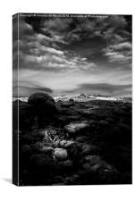 Lava Fields, Canvas Print