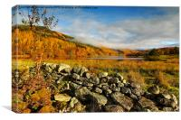 colours on the loch, Canvas Print