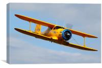 Beech Staggerwing, Canvas Print